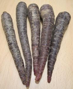 carote viola