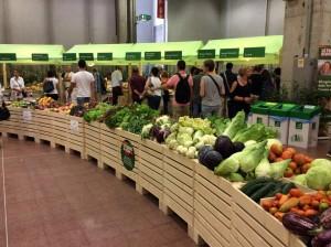 ortaggi e verdure